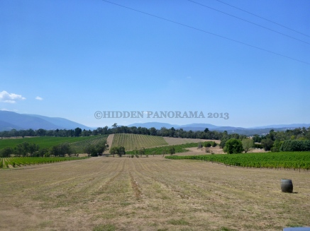 1st Winery Tour Adventure – Yarra Valley