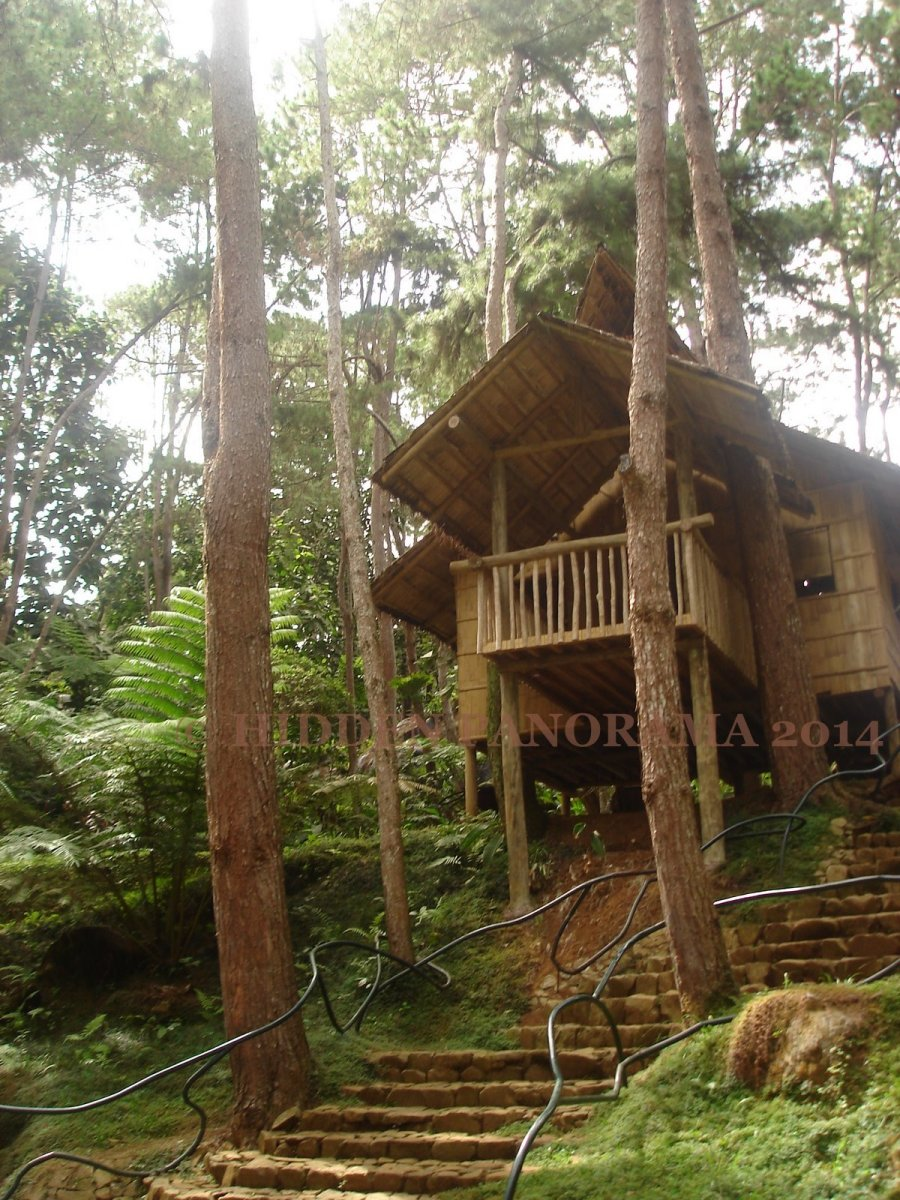 Home : Bahay Kubo (Nipa Hut) At Eden Nature Park