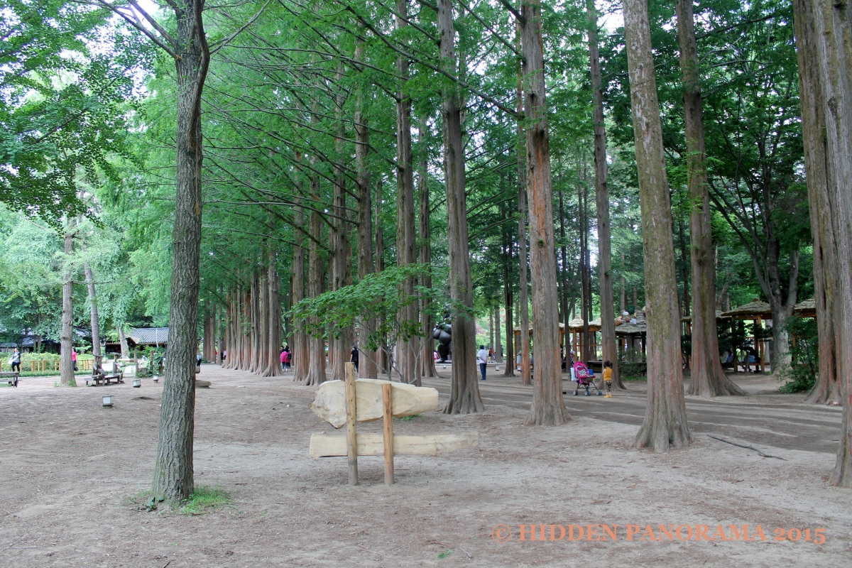 Remembering Winter Sonata at Nami Island