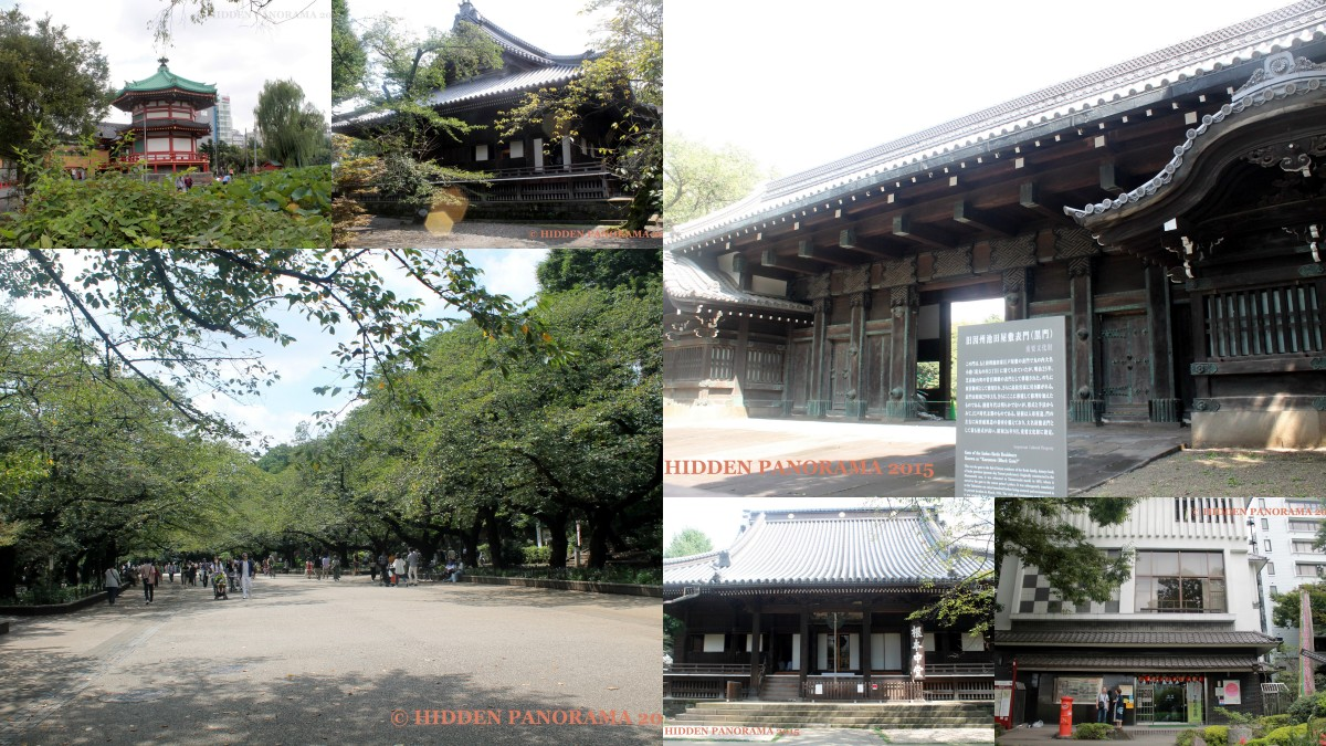 Ueno Park - One of Japan's First Public Park and Once Kaneiji's Ground
