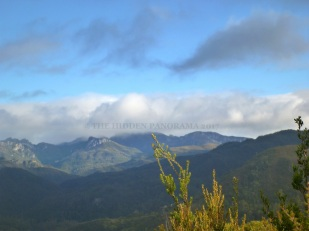 Tasmania (Day 1) : From Mount Field to Lake St Clair to Donaghys Hill