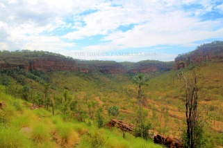 """Judbarra (Gregory) National Park – """"One of the Most Prolific Sites in Australia"""""""