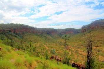 "Judbarra (Gregory) National Park – ""One of the Most Prolific Sites in Australia"""