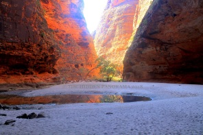 The Bungle Bungles – One of the Most Spectacular Landmarks in the World